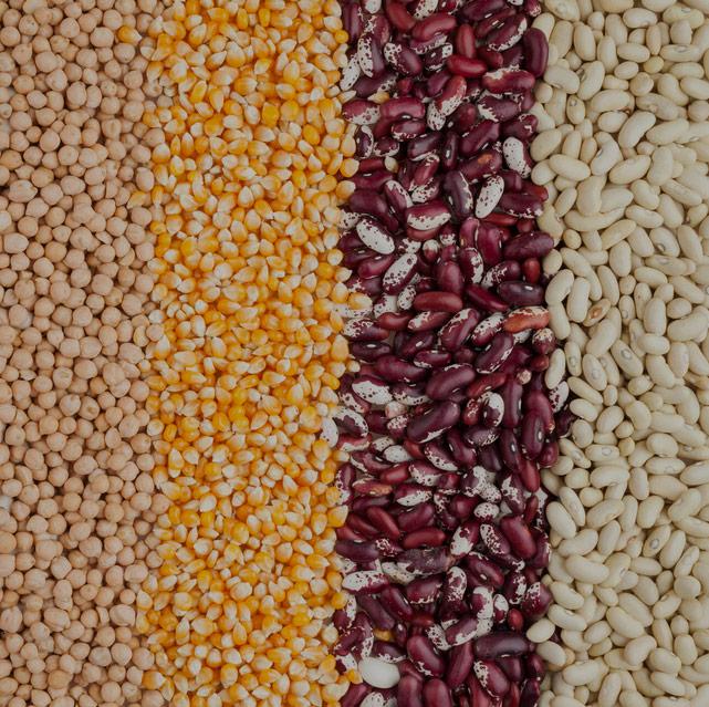 Istituto di Servizi per il Mercato Agricolo e Alimentare
